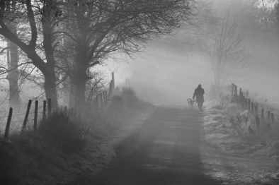 Bob Meek:Early Morning Walk